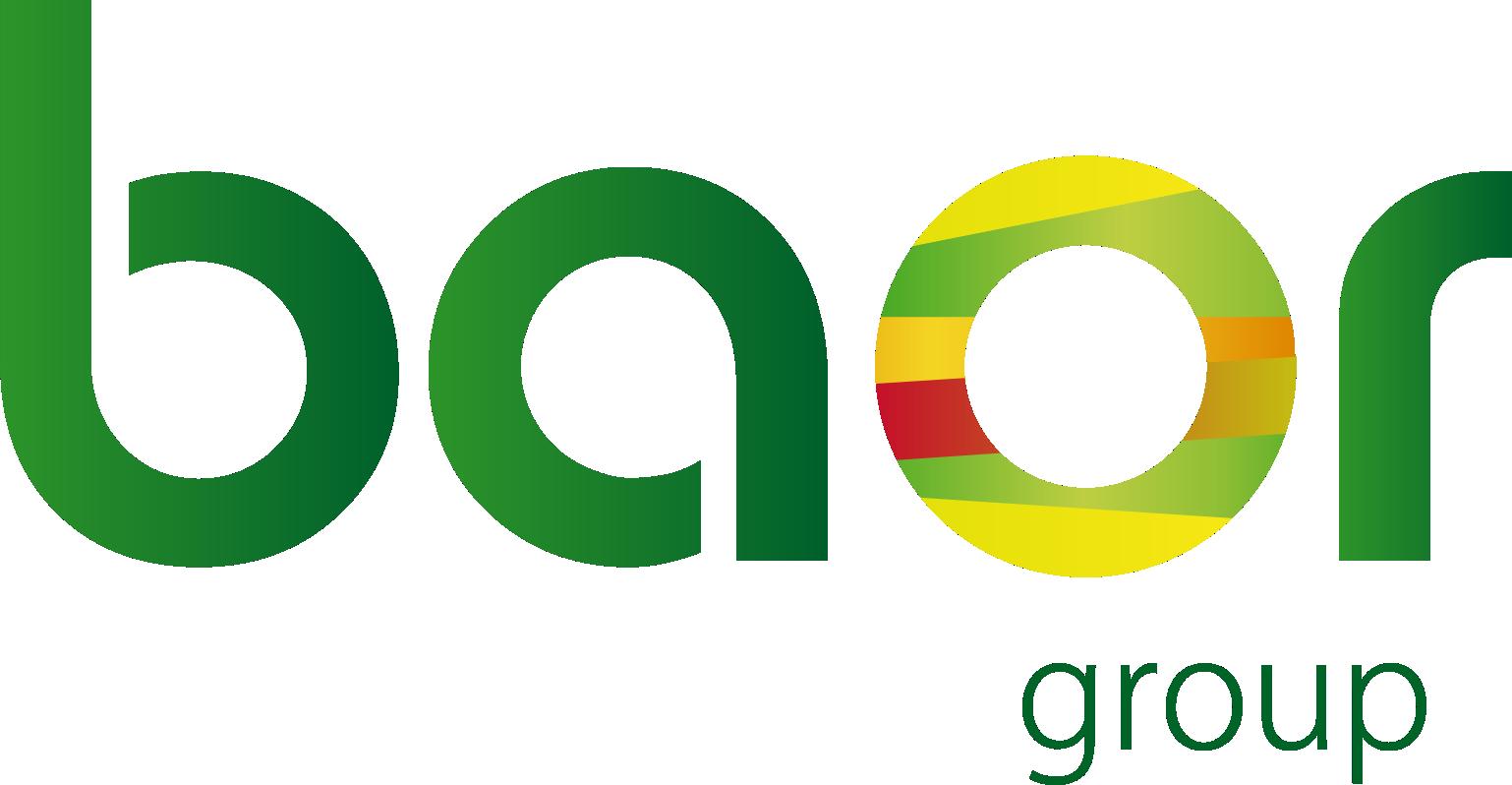 Logo Grupo Baor